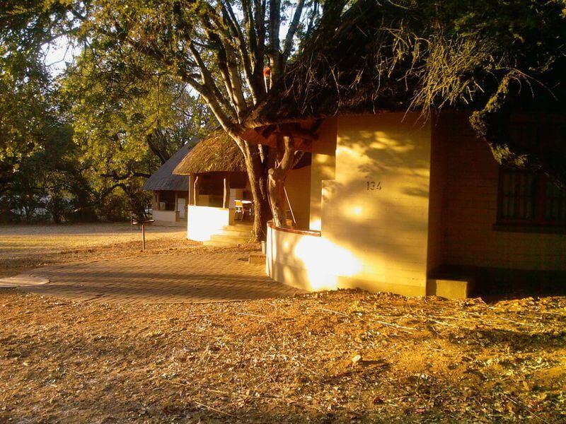 Le parc national Kruger, un parc national bien géré et très populaire en Afrique du Sud